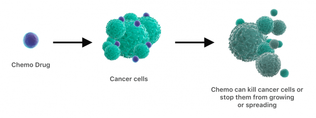 Diagram showing chemo drugs attacking cancer cells.