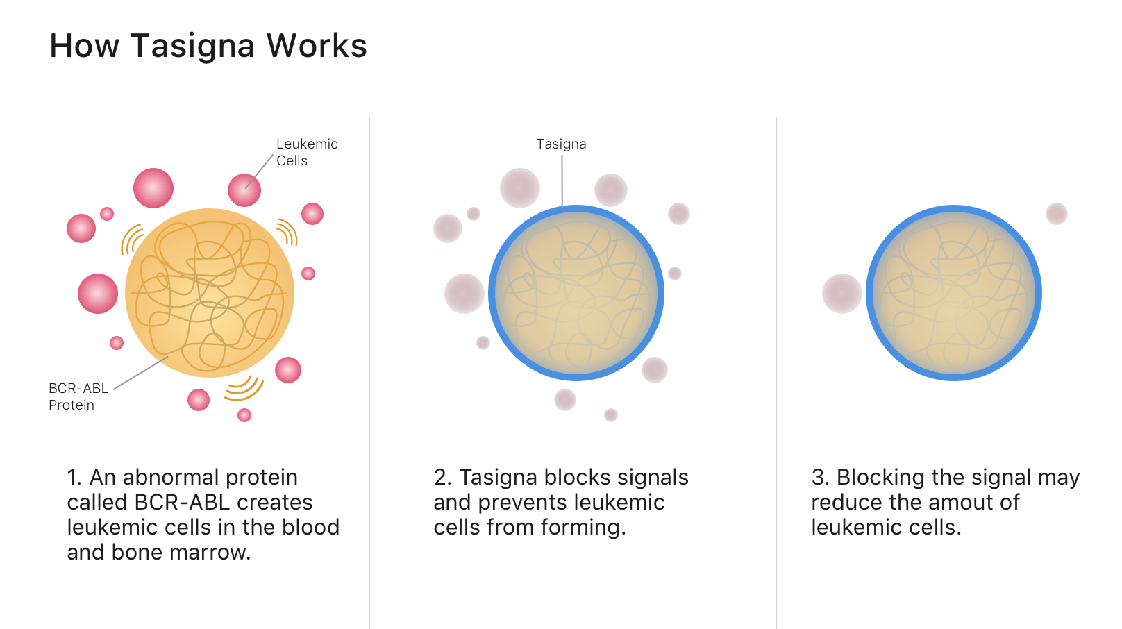 An infographic that illustrates how tasigna works.