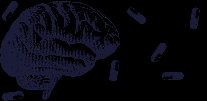 Brain & Opioid