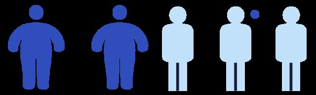 Nutrition Diagram