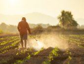 Farmer spraying crops