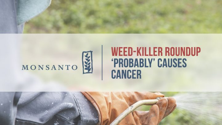 Gloved hand sprays Weed Killer
