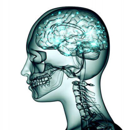 overactive brain cells