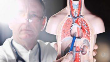 Doctor observing esophagus