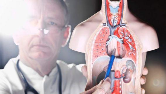 Study Links Popular Heartburn Drugs to Esophageal Cancer