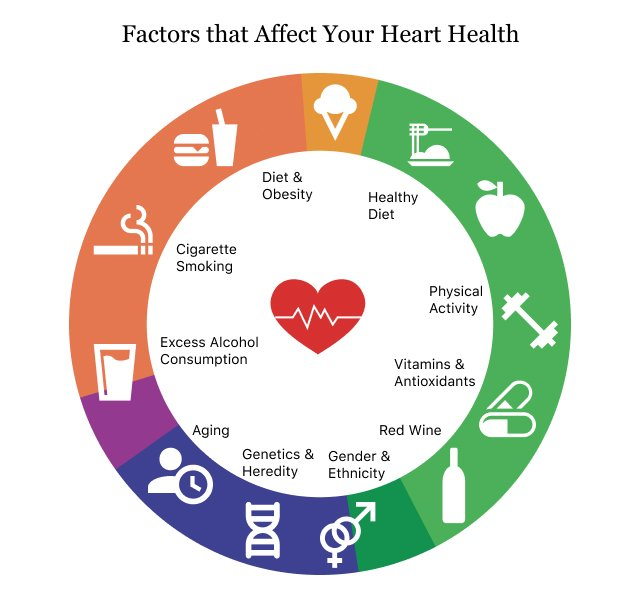 Factors that Affect Your Heart Health