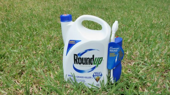 Roundup Lawsuits Alleging Cancer Link Move Forward
