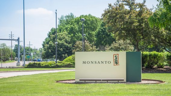 Jury Says Roundup Caused Man's Cancer, Must Now Decide If Monsanto's Liable