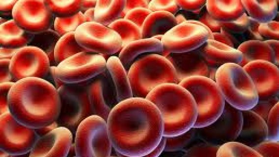 Projected Growth in Blood Thinner Market Could Put More People at Risk
