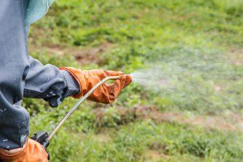 Man spraying weed killer on grass